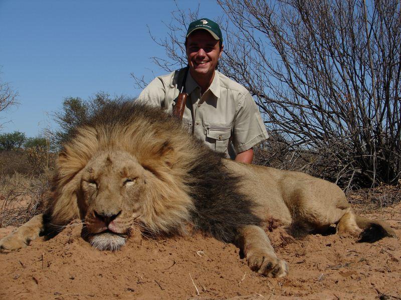 Lion_07