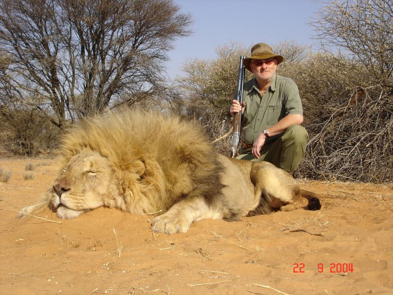 Lion_09