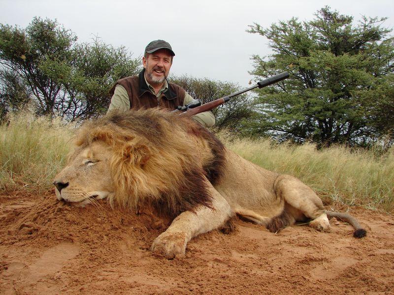 Lion_44