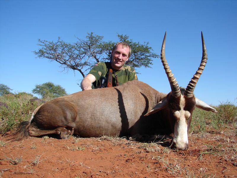 Blesbuck | Steyn Safari