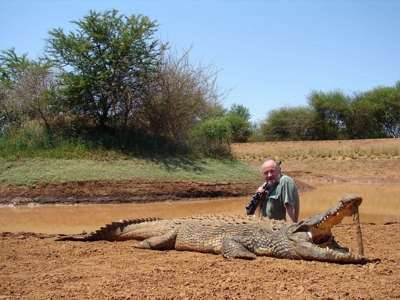 crocodile_6