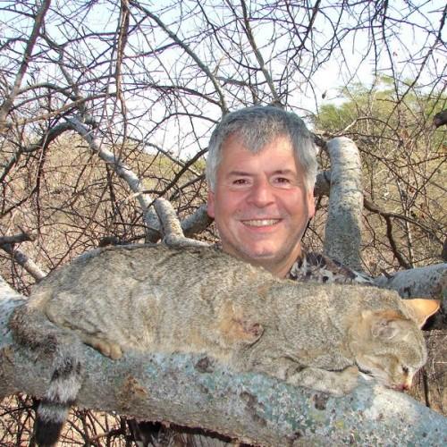 africa_wild_cat_1